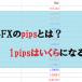 pipsとは?海外FXの1pipsは何円になる?